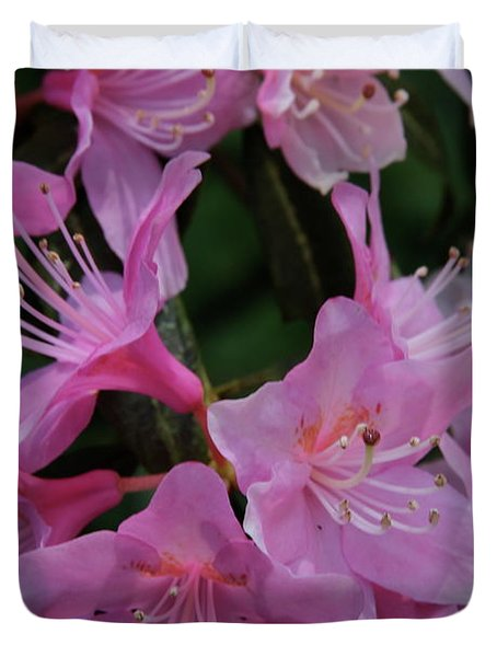 Rhododendron In The Pink Duvet Cover by Laddie Halupa