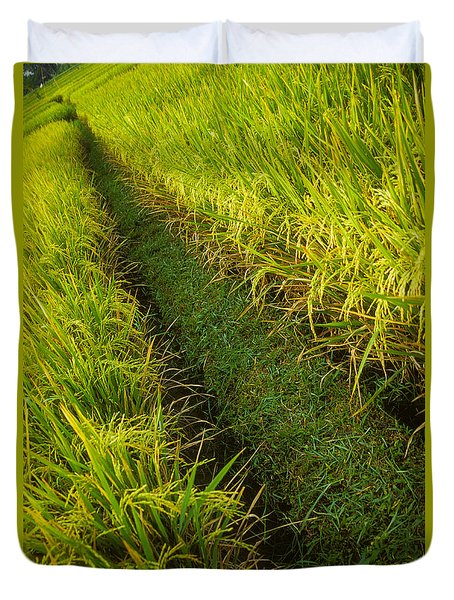 Duvet Cover featuring the photograph Rice Field Hiking by T Brian Jones