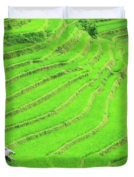 Rice Field Terraces Duvet Cover by MotHaiBaPhoto Prints