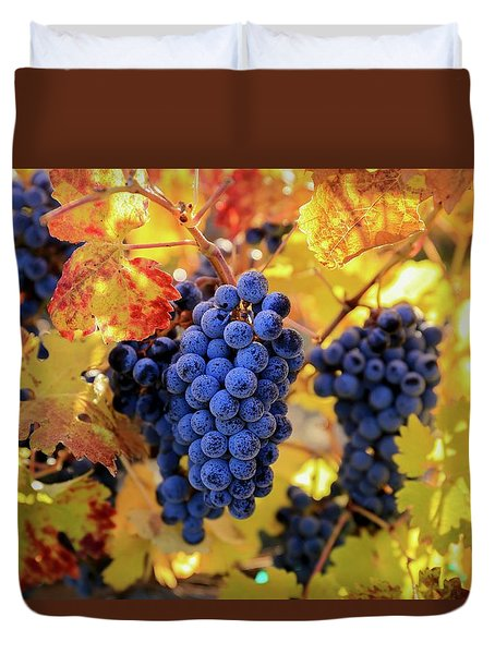 Rich Fall Colors With Grapes Duvet Cover