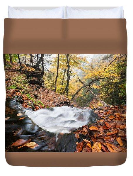 Ricketts Glen State Park Ganoga Falls Allegheny Mountains Pennsylvania Duvet Cover by Mark VanDyke
