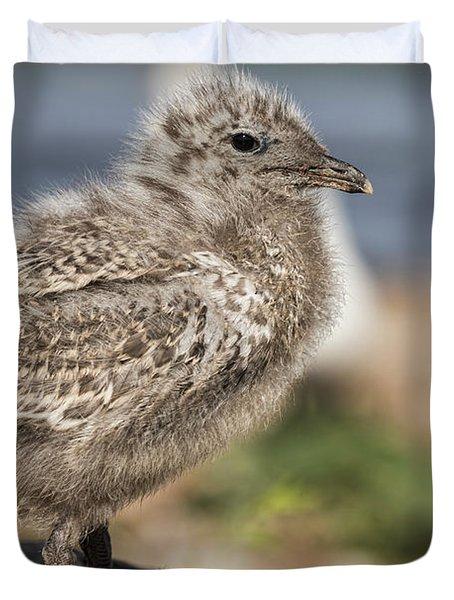 Ring-billed Gull Chick 2016-1 Duvet Cover