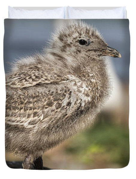 Duvet Cover featuring the photograph Ring-billed Gull Chick 2016-1 by Thomas Young