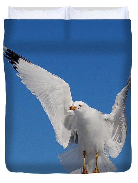 Ring Billed Gull In Flight Duvet Cover by Mircea Costina Photography