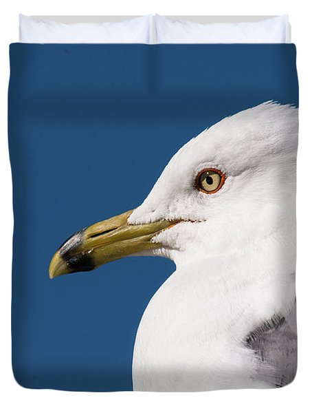Ring-billed Gull Portrait Duvet Cover