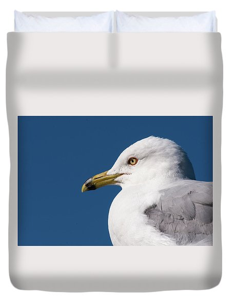 Duvet Cover featuring the photograph Ring-billed Gull Portrait by Onyonet  Photo Studios