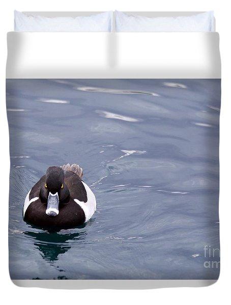 Ring-necked Duck Duvet Cover