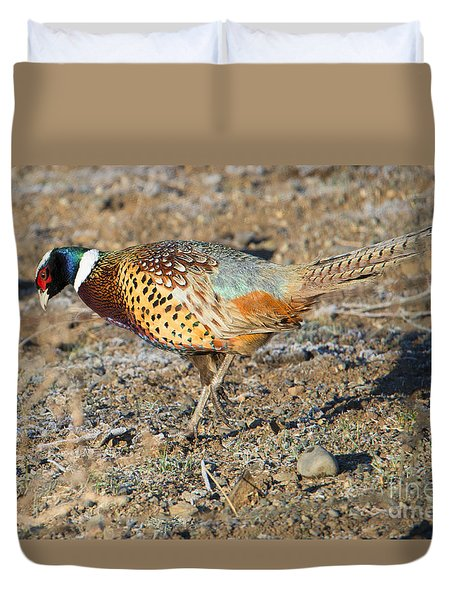 Ring-necked Pheasant Rooster Duvet Cover by Mike Dawson
