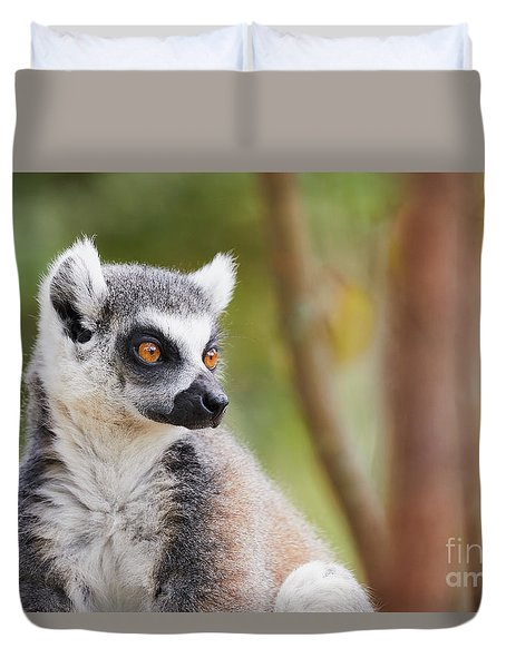 Duvet Cover featuring the photograph Ring-tailed Lemur Closeup by Nick Biemans