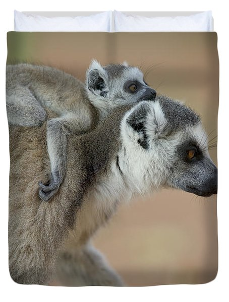 Ring-tailed Lemur Mom And Baby Duvet Cover by Cyril Ruoso