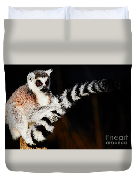 Duvet Cover featuring the photograph Ring-tailed Lemur  by Nick Biemans