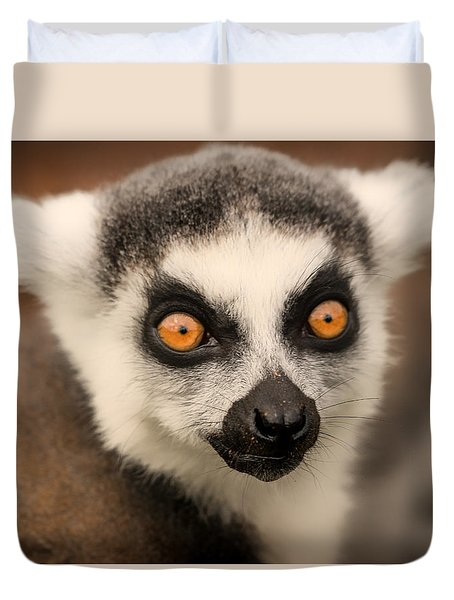 Ring Tailed Lemur Portrait Duvet Cover