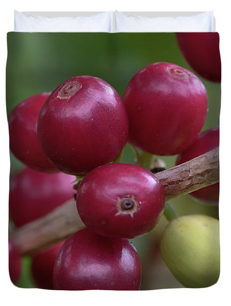 Ripe Kona Coffee Cherries Duvet Cover