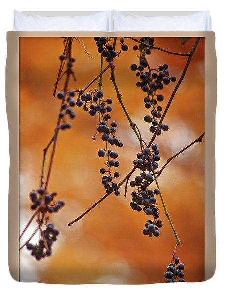 Ripe Wild Grapes  Duvet Cover