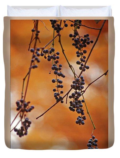Ripe Wild Grapes  Duvet Cover