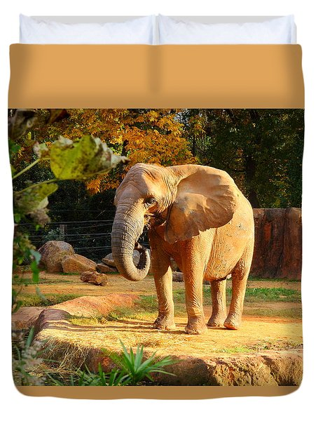 Duvet Cover featuring the photograph Riverbanks Zoo 2011 D by Joseph C Hinson Photography