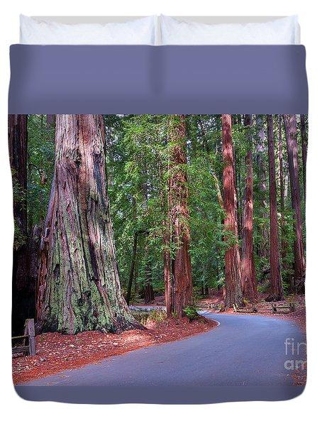 Road Through Redwood Grove Duvet Cover
