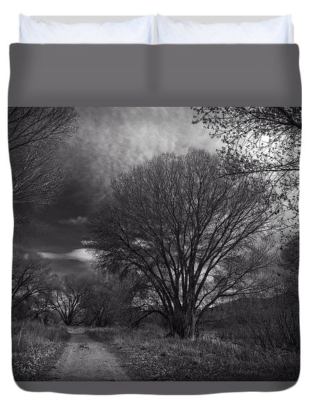 Road Through The Cottonwoods Duvet Cover