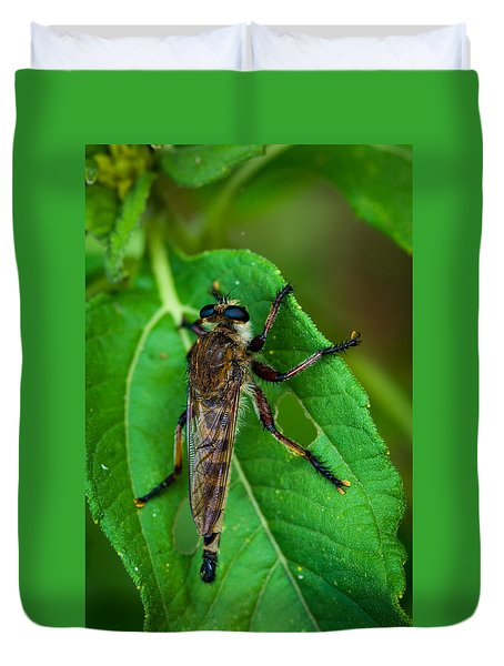 Robber Fly 1 Duvet Cover