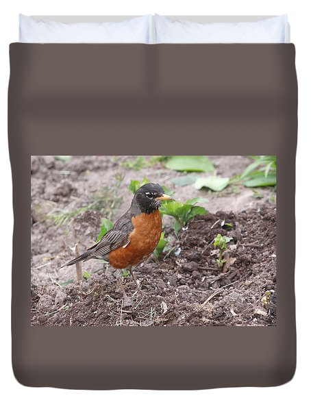 Robin Hunting Duvet Cover