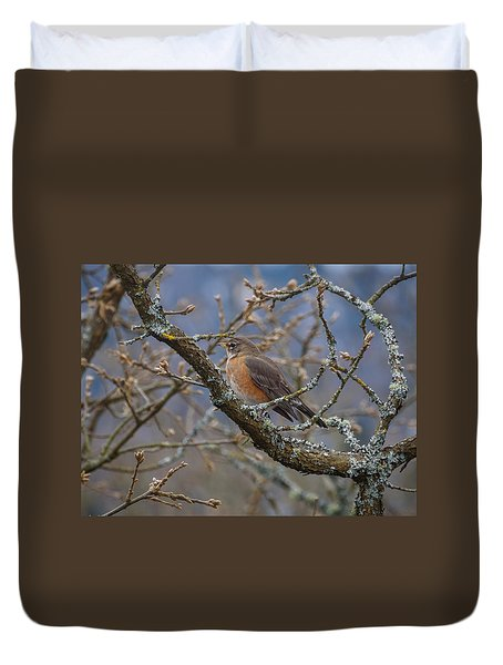 Robin In A Tree Duvet Cover