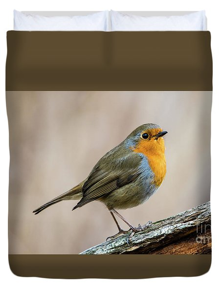Robin In Spring Duvet Cover by Torbjorn Swenelius