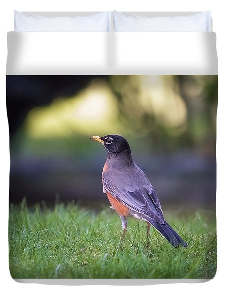 Duvet Cover featuring the photograph Robin by Kathy King