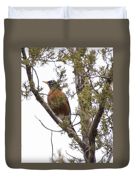 Robin On The Lookout Duvet Cover by Laura Pratt