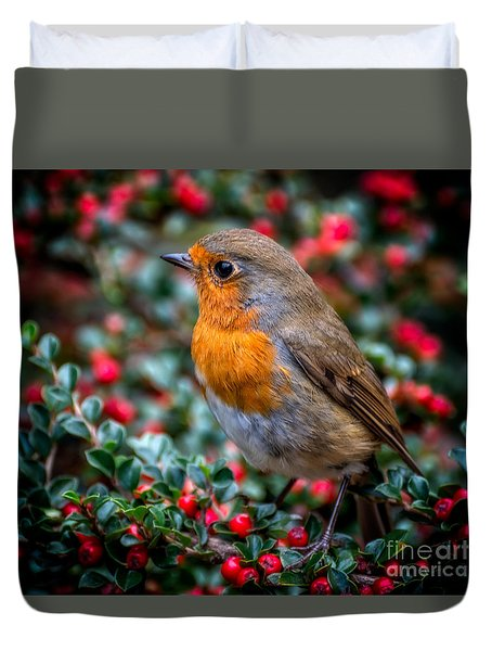 Duvet Cover featuring the photograph Robin Redbreast by Adrian Evans