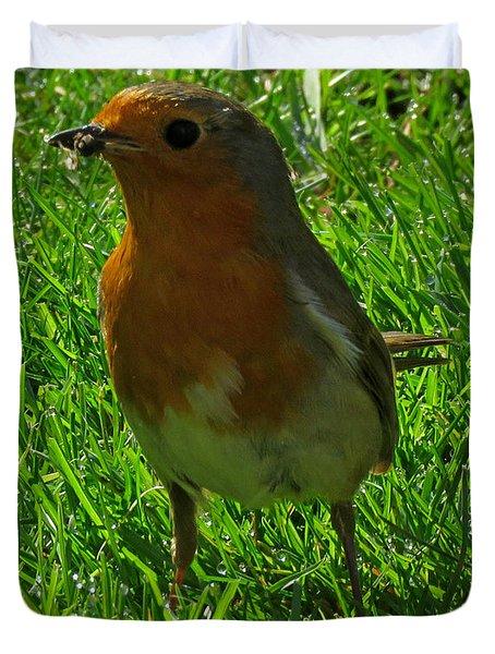 Robin1 Duvet Cover