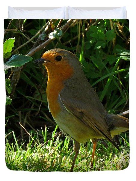 Robin2 Duvet Cover