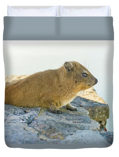 Rock Hyrax On Table Mountain Cape Town South Africa Duvet Cover