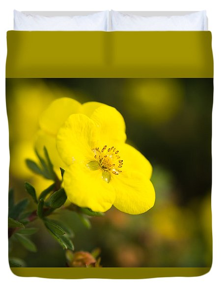 Duvet Cover featuring the photograph Rock Rose by Erin Kohlenberg