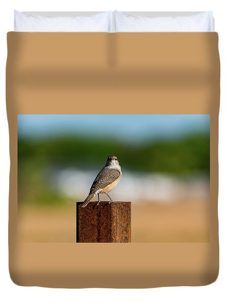 Rock Wren 1 Duvet Cover