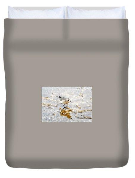 Rock Wren In Mammoth Springs Yellowstone Duvet Cover