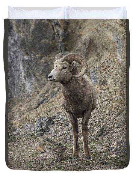 Rockies Big Horn Duvet Cover