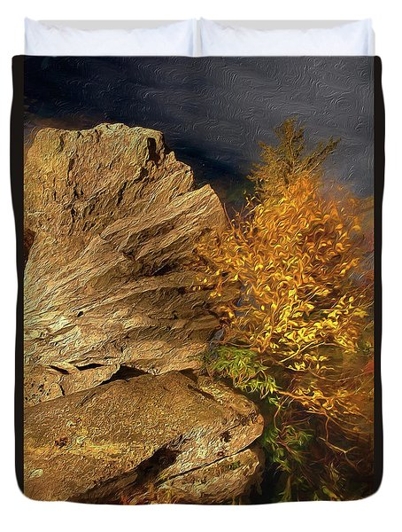 Duvet Cover featuring the painting Rocks And Fall Colors At Night In The Blue Ridge Ap by Dan Carmichael