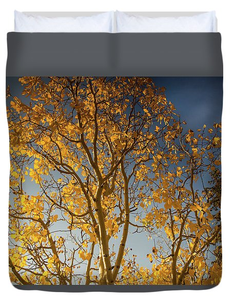 Rocky Mountain Fall Colors Duvet Cover