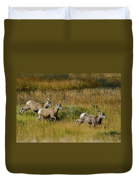 Rocky Mountain Goats 7410 Duvet Cover