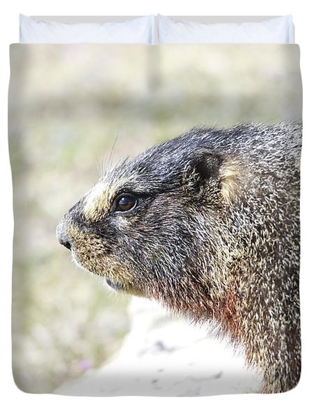 Rocky Mountain Marmot In Spring Duvet Cover