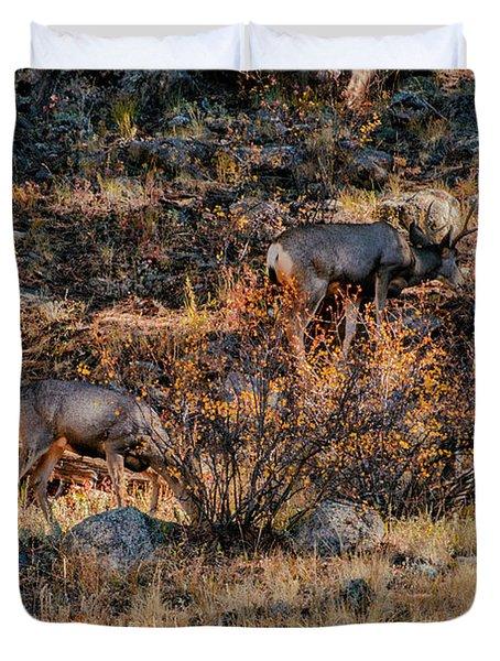 Rocky Mountain National Park Deer Colorado Duvet Cover