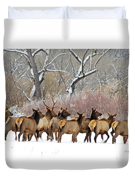 Rocky Mountain Winter Elk Duvet Cover
