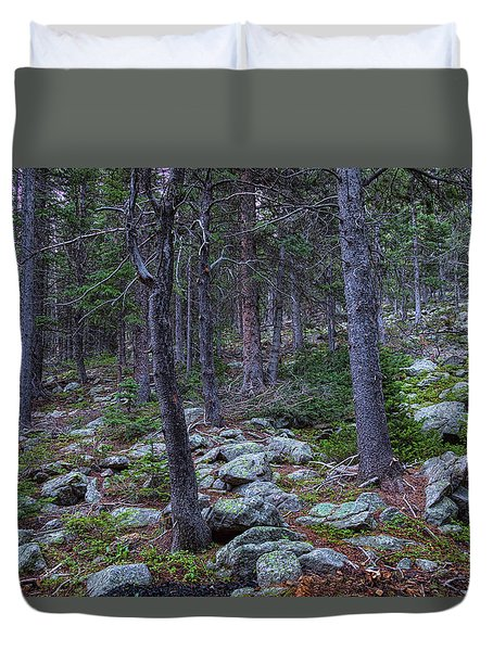 Duvet Cover featuring the photograph Rocky Nature Landscape by James BO Insogna