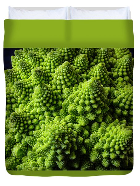 Romanesco Broccoli Duvet Cover by Garry Gay