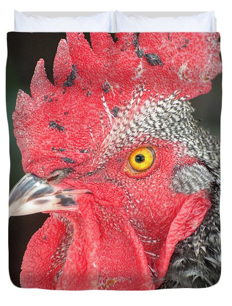 Rooster Named Brute Duvet Cover