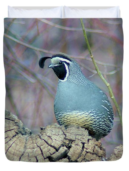 Rooster Quail  Duvet Cover by Jeff Swan