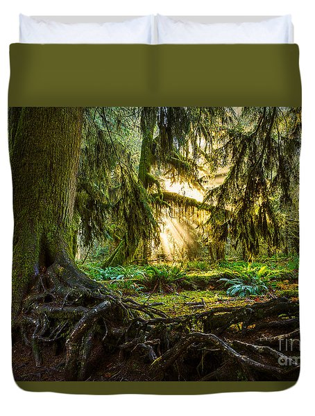 Roots And Light Duvet Cover