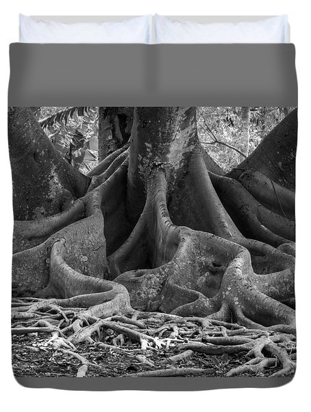 Roots Eleven Duvet Cover by Susan Molnar