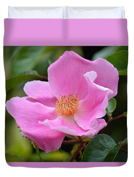 Rosa Canina. Duvet Cover by Terence Davis