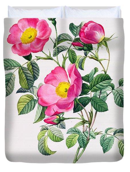 Rosa Lumila Duvet Cover